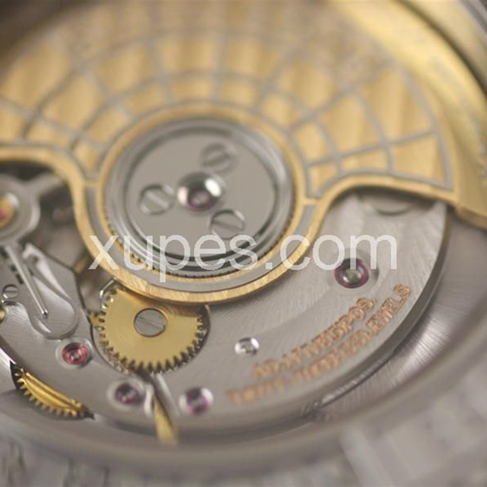Roger Dubuis Easy Diver Stainless steel