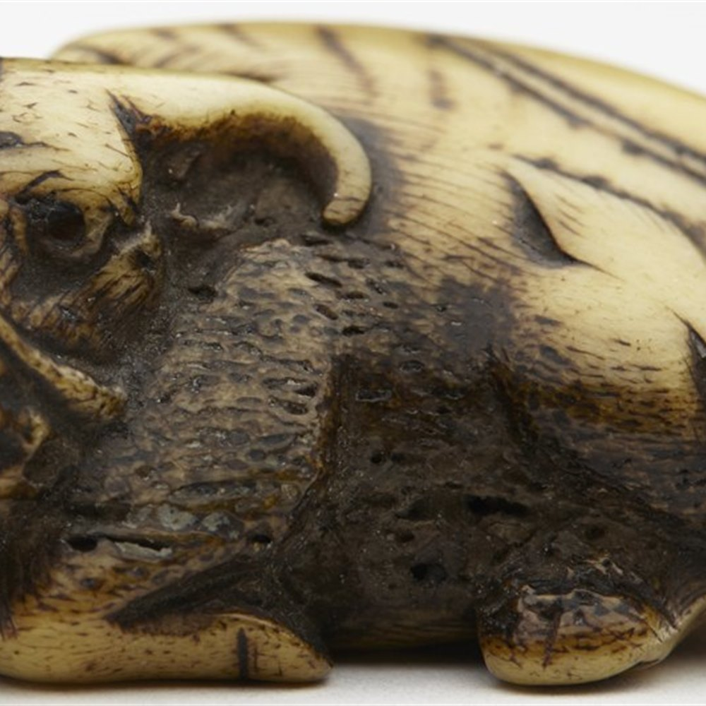 Superb Japanese Stags Horn Water Buffalo Netsuke 18th/19th C.