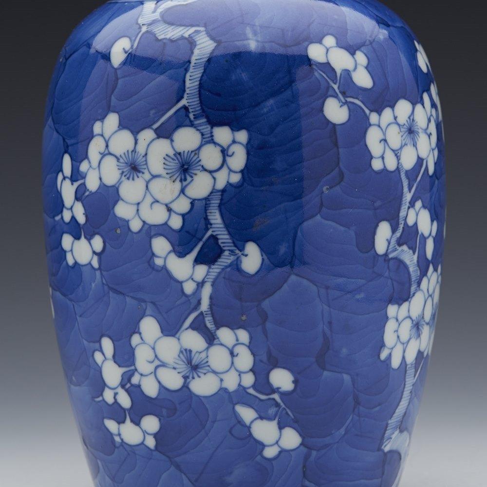 Unusual Shape Antique Chinese Kangxi Hawthorn & Cracked Ice Jar 1662 - 1722